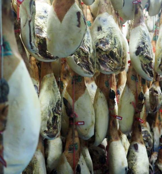 secado y manipulacion de jamones ibericos