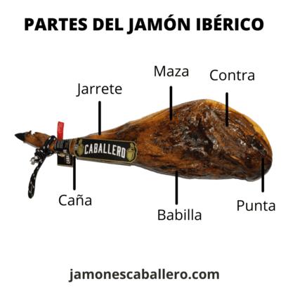 partes del jamon iberico